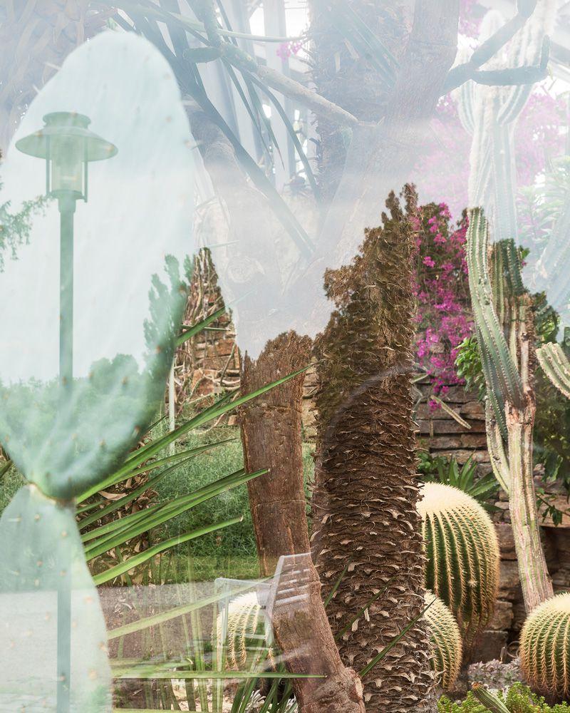 DasEden-HenryWulff-Bild03_web